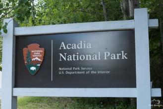 Acadia (1 of 14)