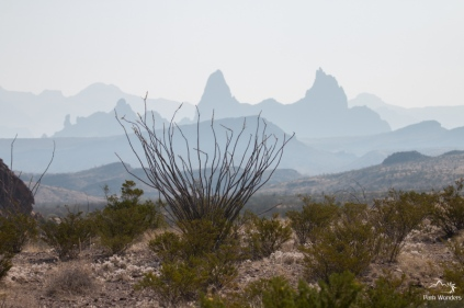 BigBend (14 of 15)