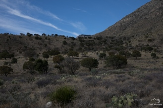 GuadalupeMountains (2 of 11)