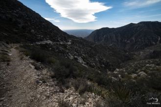 GuadalupeMountains (5 of 11)